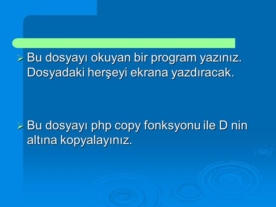  Bu dosyayı okuyan bir program yazınız. Dosyadaki herşeyi ekrana yazdıracak.  Bu dosyayı php copy fonksyonu ile D nin altına kopyalayınız.