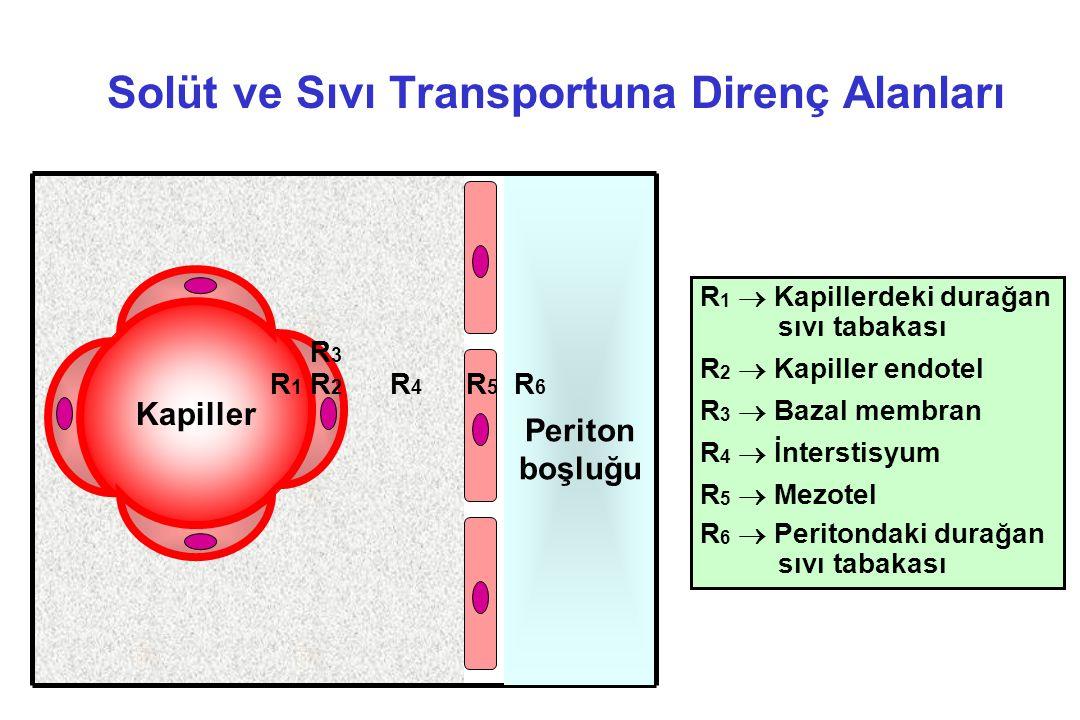 Solüt ve Sıvı Transportuna Direnç Alanları R 1  Kapillerdeki durağan sıvı tabakası R 2  Kapiller endotel R 3  Bazal membran R 4  İnterstisyum R 5
