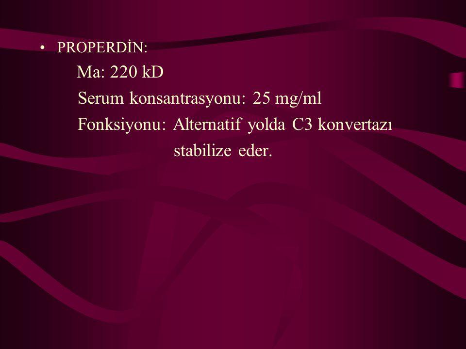 PROPERDİN: Ma: 220 kD Serum konsantrasyonu: 25 mg/ml Fonksiyonu: Alternatif yolda C3 konvertazı stabilize eder.