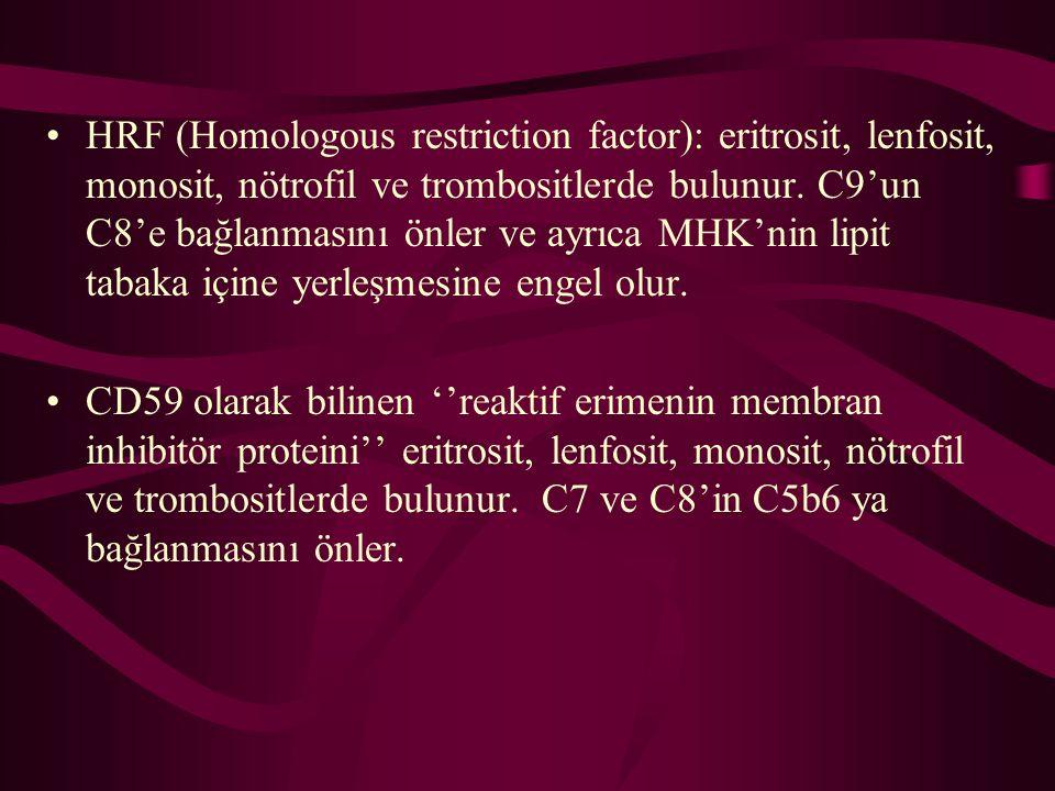 HRF (Homologous restriction factor): eritrosit, lenfosit, monosit, nötrofil ve trombositlerde bulunur. C9'un C8'e bağlanmasını önler ve ayrıca MHK'nin