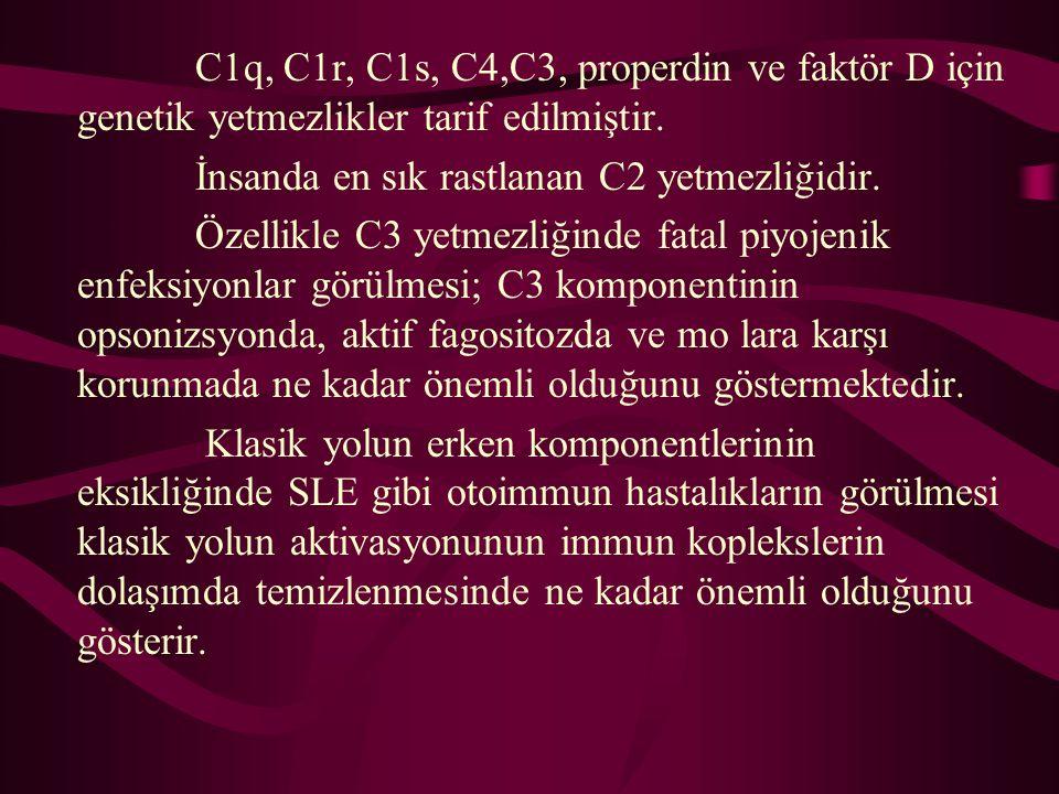 C1q, C1r, C1s, C4,C3, properdin ve faktör D için genetik yetmezlikler tarif edilmiştir. İnsanda en sık rastlanan C2 yetmezliğidir. Özellikle C3 yetmez