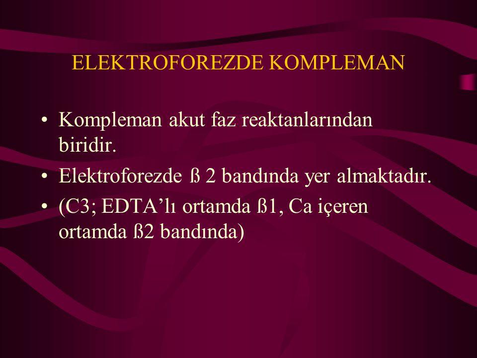ELEKTROFOREZDE KOMPLEMAN Kompleman akut faz reaktanlarından biridir. Elektroforezde ß 2 bandında yer almaktadır. (C3; EDTA'lı ortamda ß1, Ca içeren or