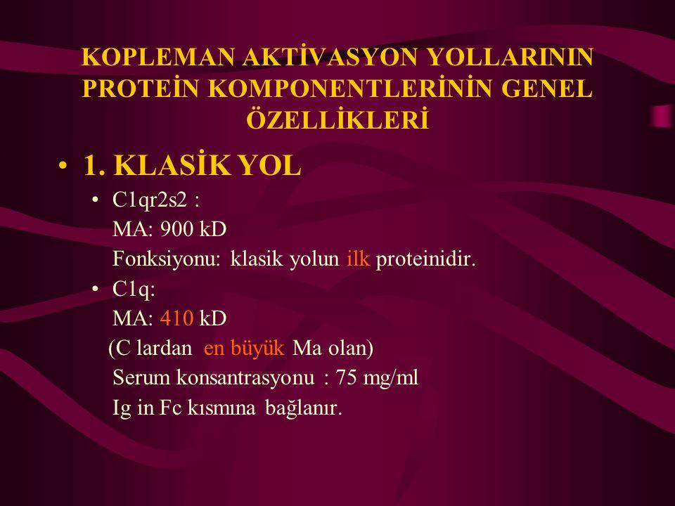 KOPLEMAN AKTİVASYON YOLLARININ PROTEİN KOMPONENTLERİNİN GENEL ÖZELLİKLERİ 1. KLASİK YOL C1qr2s2 : MA: 900 kD Fonksiyonu: klasik yolun ilk proteinidir.