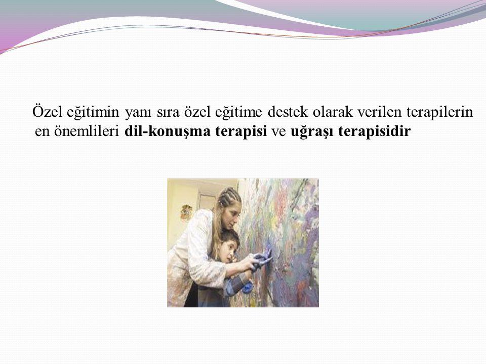Özel eğitimin yanı sıra özel eğitime destek olarak verilen terapilerin en önemlileri dil-konuşma terapisi ve uğraşı terapisidir