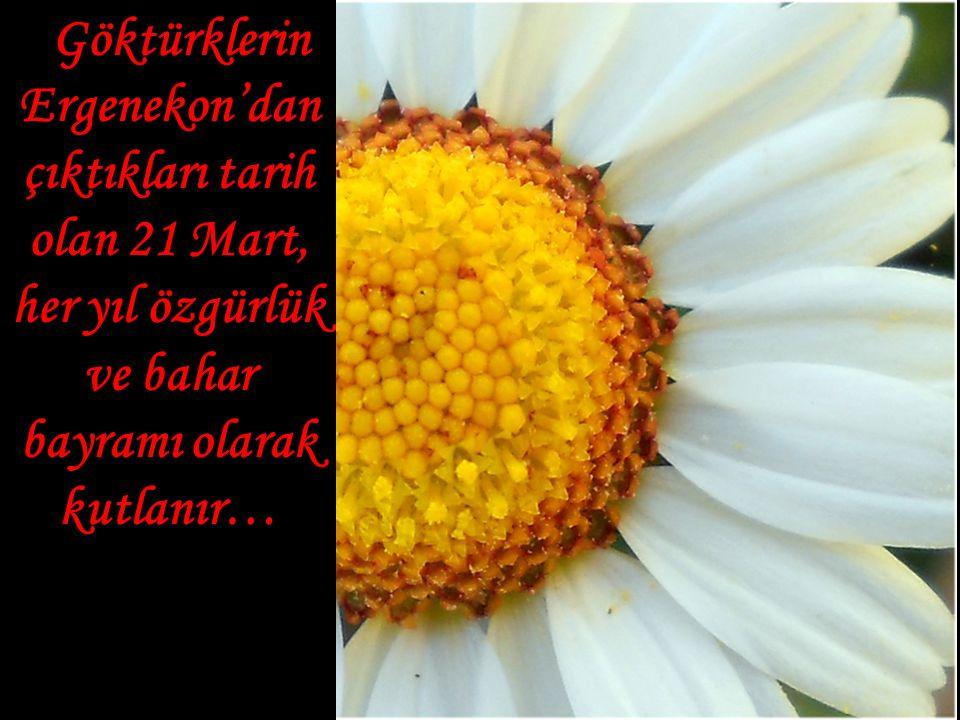 Göktürklerin Ergenekon'dan çıktıkları tarih olan 21 Mart, her yıl özgürlük ve bahar bayramı olarak kutlanır… Göktürklerin Ergenekon'dan çıktıkları tar
