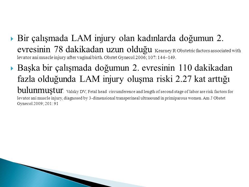  Bir çalışmada LAM injury olan kadınlarda doğumun 2. evresinin 78 dakikadan uzun olduğu Kearney R Obstetric factors associated with levator ani muscl