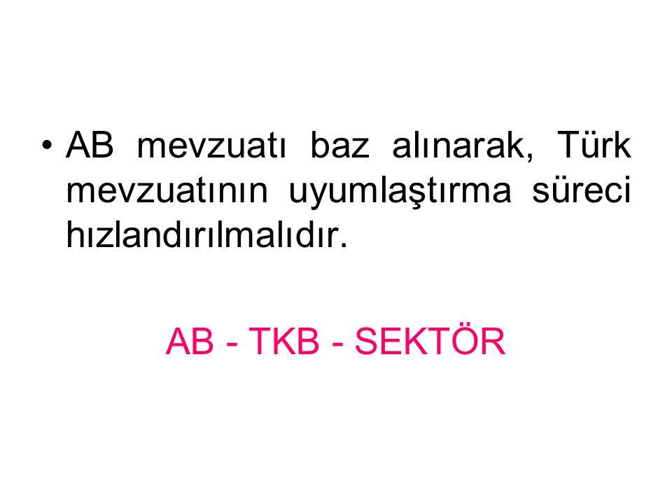 AB mevzuatı baz alınarak, Türk mevzuatının uyumlaştırma süreci hızlandırılmalıdır.