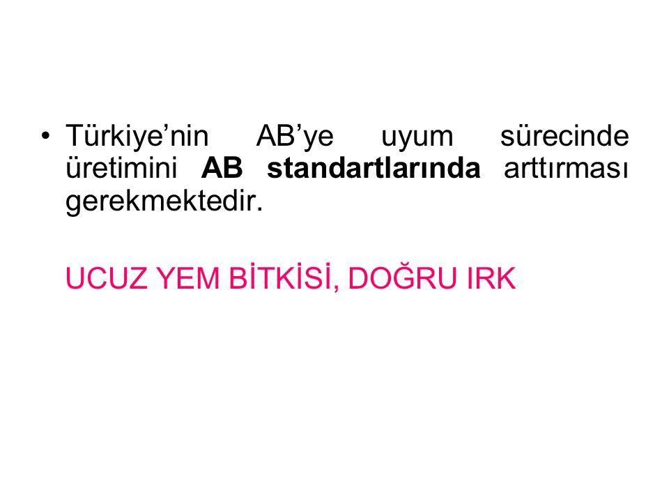 Türkiye'nin AB'ye uyum sürecinde üretimini AB standartlarında arttırması gerekmektedir.