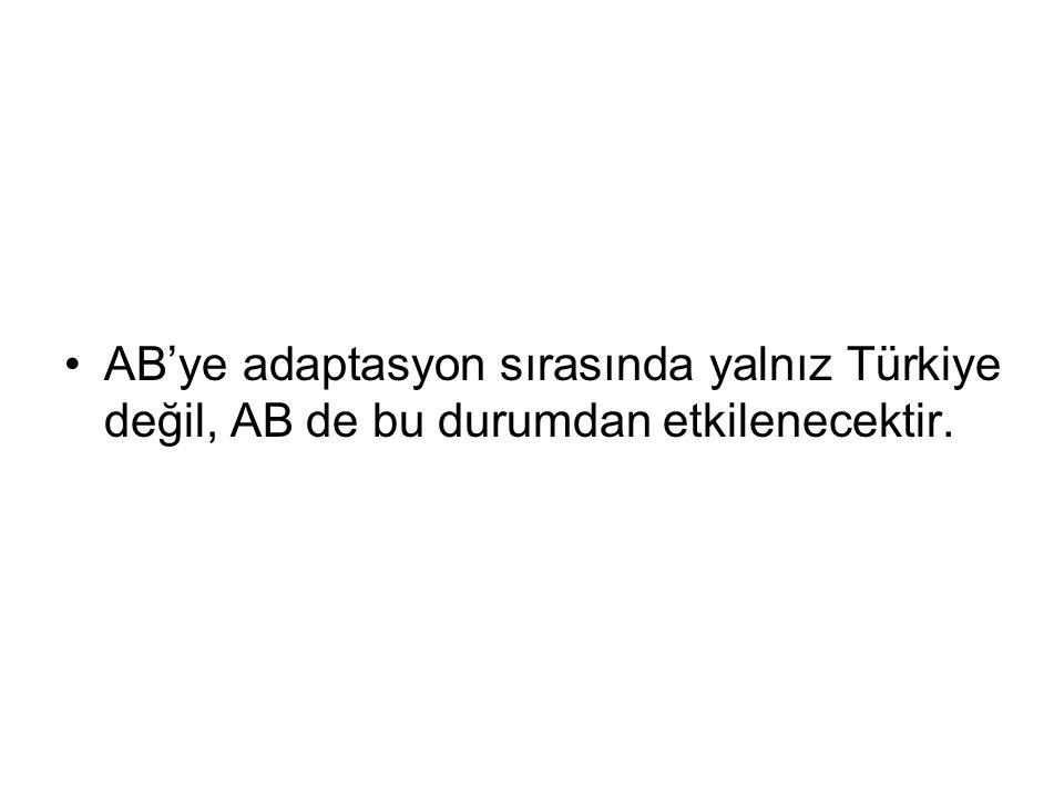 AB'ye adaptasyon sırasında yalnız Türkiye değil, AB de bu durumdan etkilenecektir.