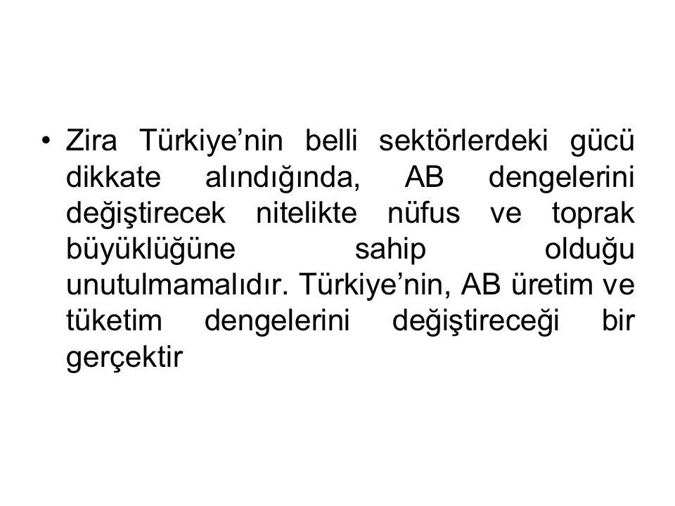 Zira Türkiye'nin belli sektörlerdeki gücü dikkate alındığında, AB dengelerini değiştirecek nitelikte nüfus ve toprak büyüklüğüne sahip olduğu unutulmamalıdır.