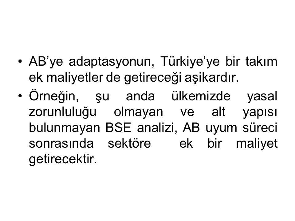 AB'ye adaptasyonun, Türkiye'ye bir takım ek maliyetler de getireceği aşikardır.