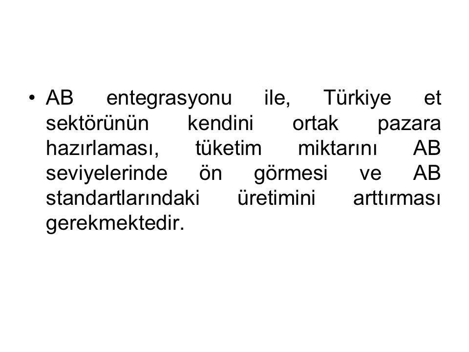 AB entegrasyonu ile, Türkiye et sektörünün kendini ortak pazara hazırlaması, tüketim miktarını AB seviyelerinde ön görmesi ve AB standartlarındaki üretimini arttırması gerekmektedir.