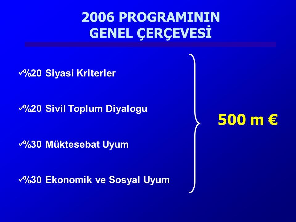 2006 PROGRAMININ GENEL ÇERÇEVESİ %20 Siyasi Kriterler %20 Sivil Toplum Diyalogu %30 Müktesebat Uyum %30 Ekonomik ve Sosyal Uyum 500 m €