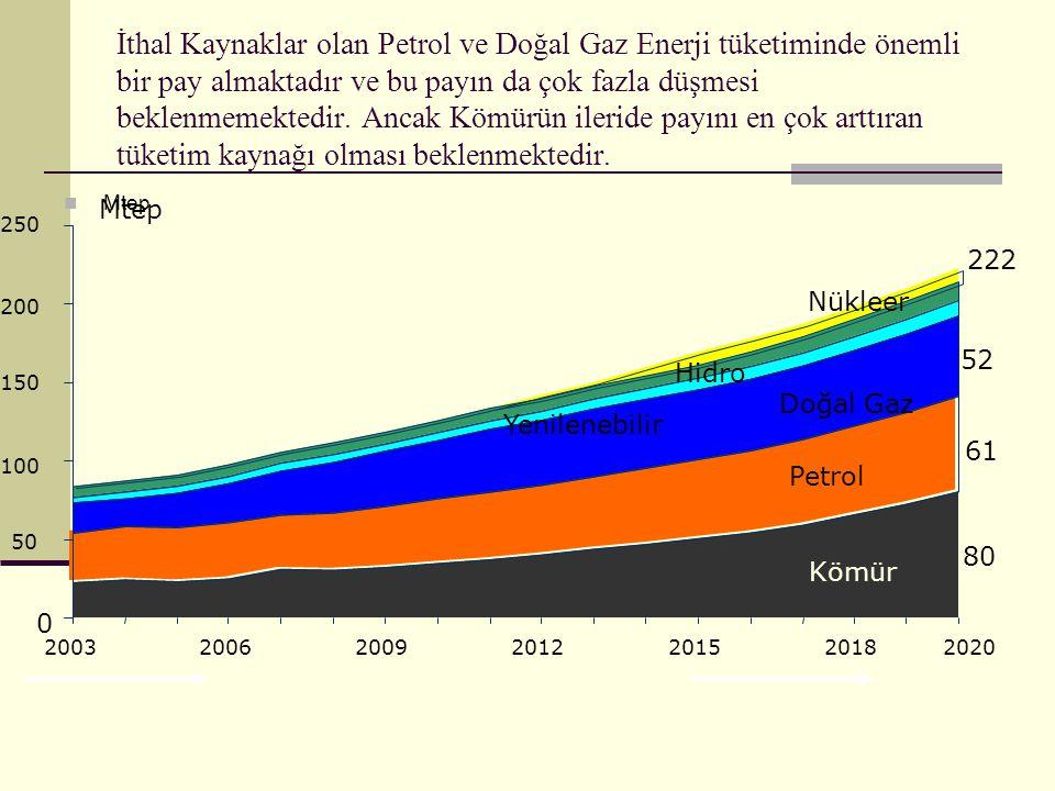 İthal Kaynaklar olan Petrol ve Doğal Gaz Enerji tüketiminde önemli bir pay almaktadır ve bu payın da çok fazla düşmesi beklenmemektedir.