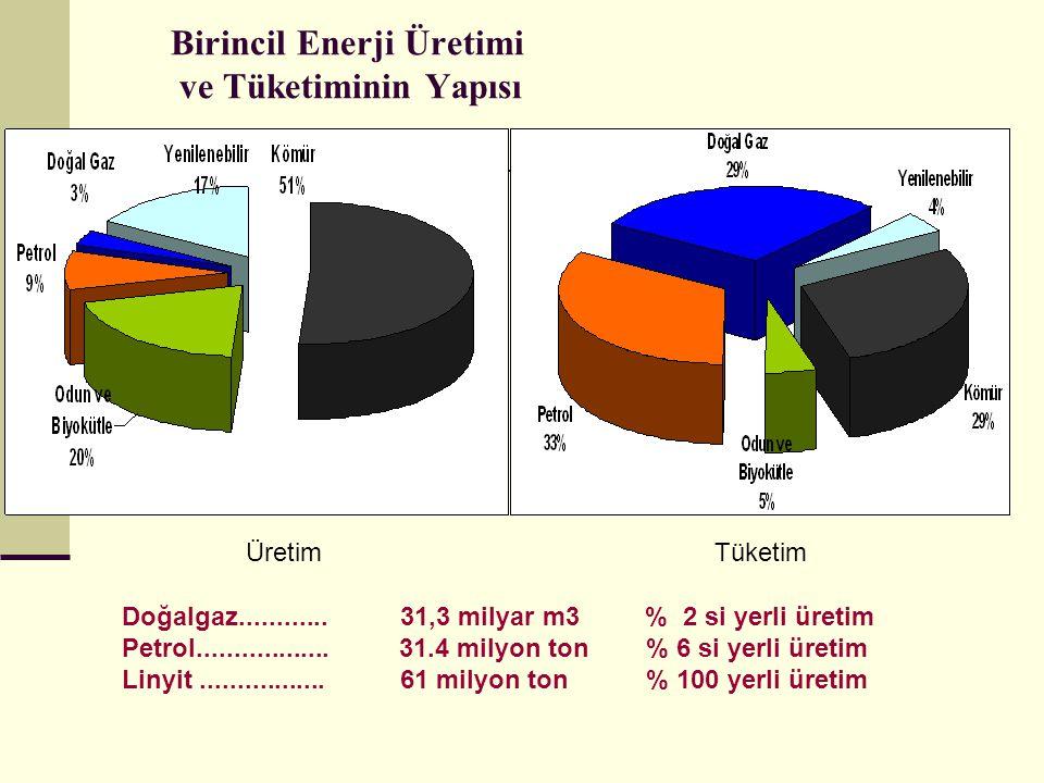 Birincil Enerji Üretimi ve Tüketiminin Yapısı ÜretimTüketim Doğalgaz............31,3 milyar m3 % 2 si yerli üretim Petrol..................