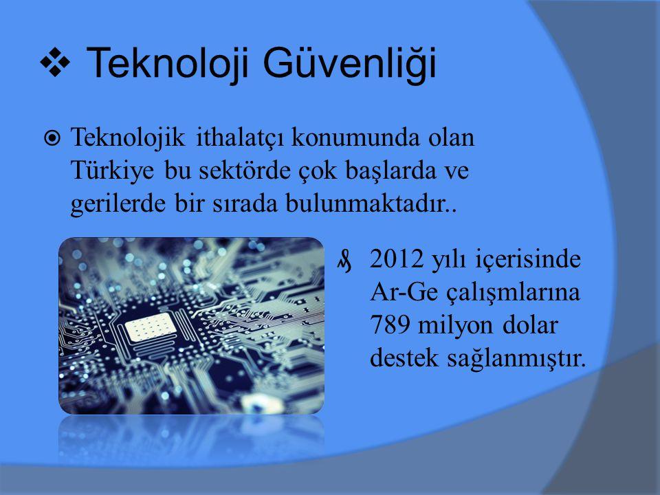  Teknoloji Güvenliği  Teknolojik ithalatçı konumunda olan Türkiye bu sektörde çok başlarda ve gerilerde bir sırada bulunmaktadır..