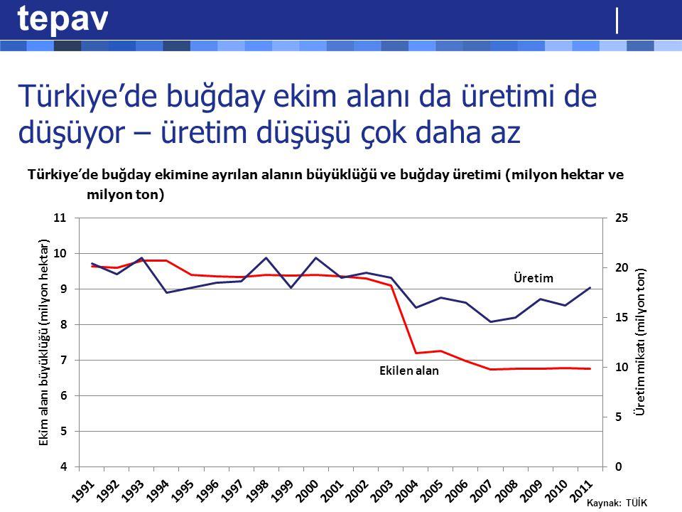 Türkiye'de buğday ekim alanı da üretimi de düşüyor – üretim düşüşü çok daha az Türkiye'de buğday ekimine ayrılan alanın büyüklüğü ve buğday üretimi (m