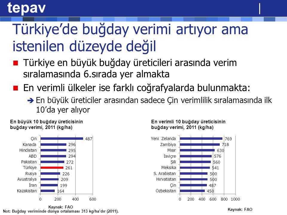 Türkiye'de buğday verimi artıyor ama istenilen düzeyde değil Türkiye en büyük buğday üreticileri arasında verim sıralamasında 6.sırada yer almakta En