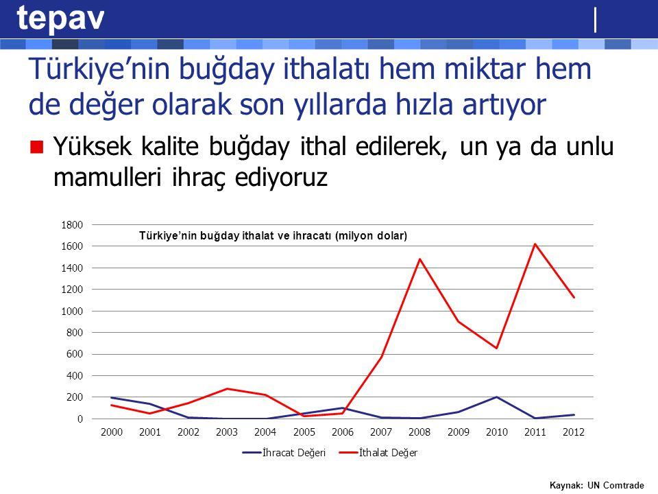 Türkiye'nin buğday ithalatı hem miktar hem de değer olarak son yıllarda hızla artıyor Yüksek kalite buğday ithal edilerek, un ya da unlu mamulleri ihr