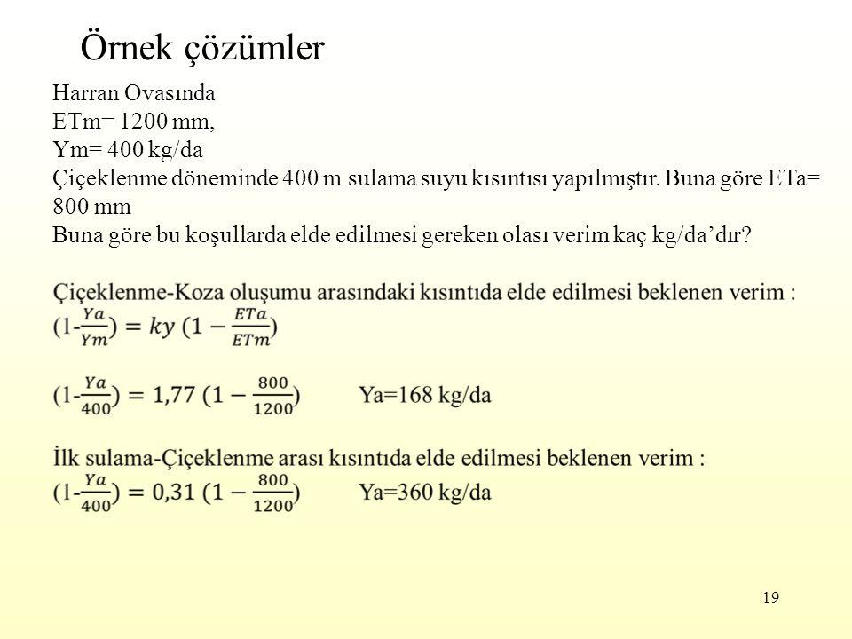 19 Örnek çözümler Harran Ovasında ETm= 1200 mm, Ym= 400 kg/da Çiçeklenme döneminde 400 m sulama suyu kısıntısı yapılmıştır. Buna göre ETa= 800 mm Buna