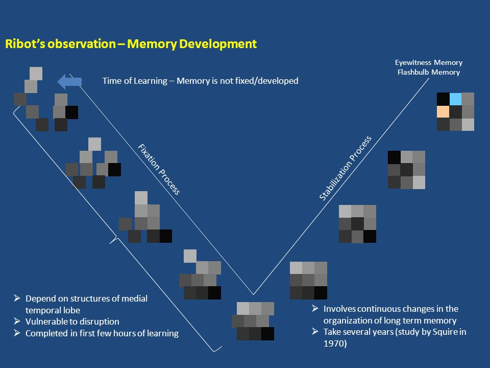 Retrograde amnesia  Damage to hippocampal system which impairs new learning  Disrupts some memories that were acquired before the damage occurred -