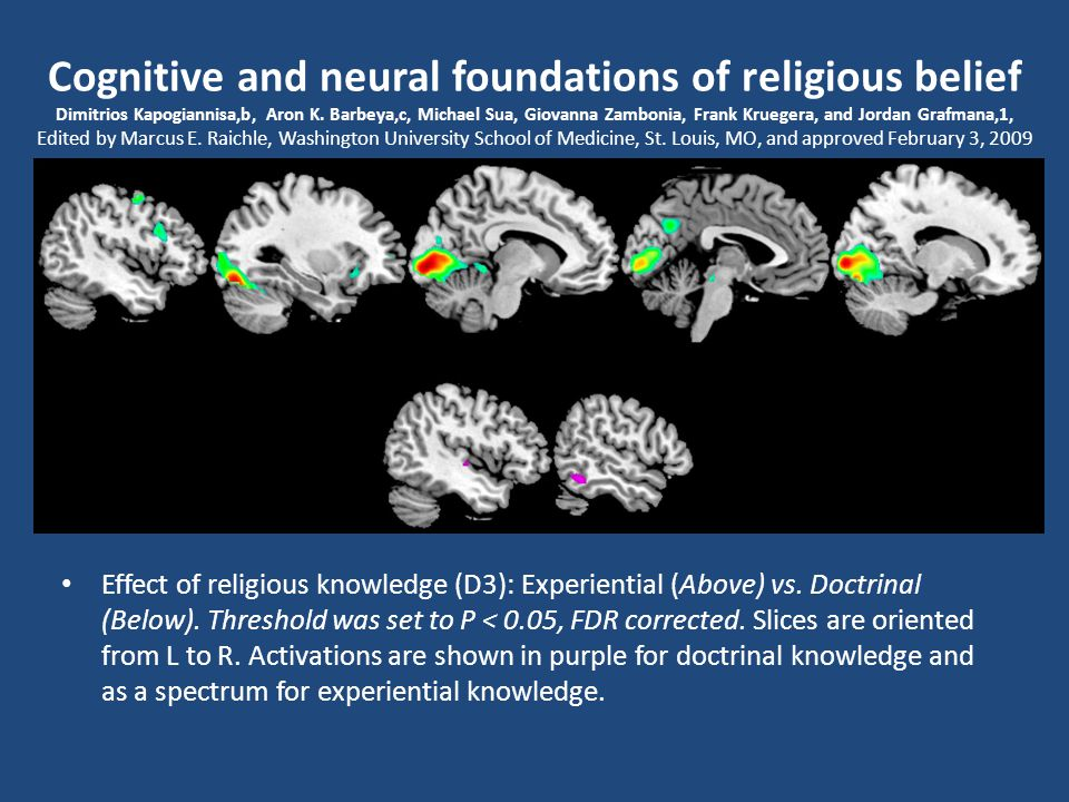 "KİŞİLİĞİN MANEVİ YÖNÜ ""... rites manage to tap into the precise brain mechanisms that tend to make believers interpret perceptions and feelings as evi"