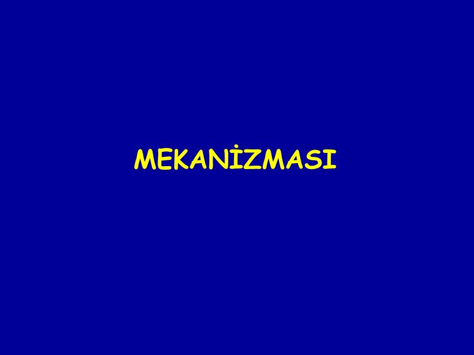 MEKANİZMASI