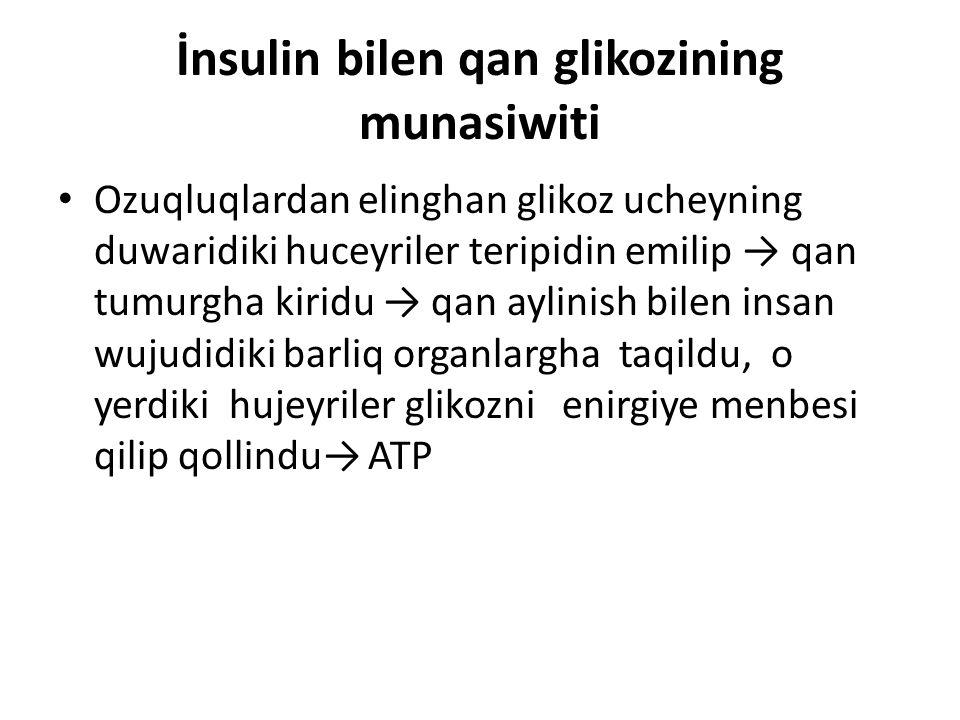 İnsulin'ning roli Glikoz'ning huceyre ichige kirishi uchun insulin hormunigha ihtiyaji boldu.