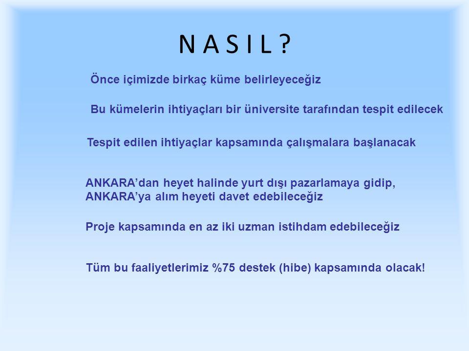 N A S I L .