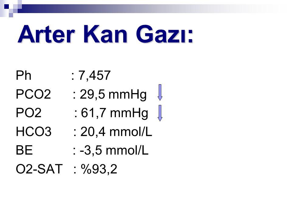 Arter Kan Gazı: Ph : 7,457 PCO2 : 29,5 mmHg PO2 : 61,7 mmHg HCO3 : 20,4 mmol/L BE : -3,5 mmol/L O2-SAT : %93,2