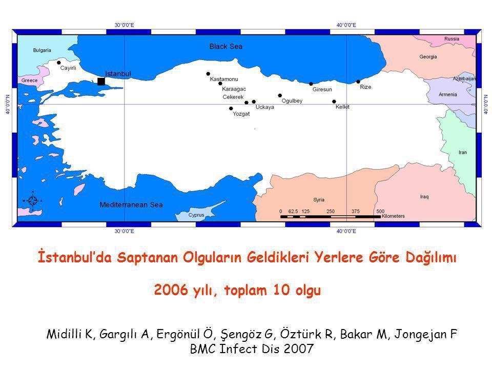 İstanbul'da Saptanan Olguların Geldikleri Yerlere Göre Dağılımı 2006 yılı, toplam 10 olgu Midilli K, Gargılı A, Ergönül Ö, Şengöz G, Öztürk R, Bakar M