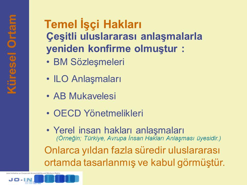 Çeşitli uluslararası anlaşmalarla yeniden konfirme olmuştur : BM Sözleşmeleri ILO Anlaşmaları AB Mukavelesi OECD Yönetmelikleri Yerel insan hakları an