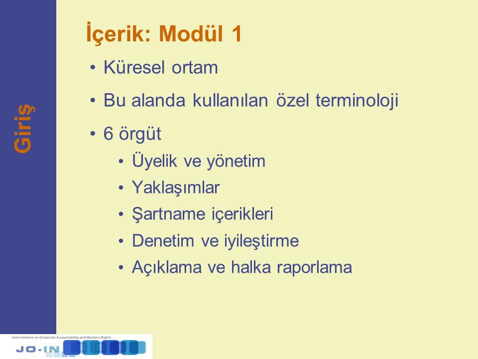 İçerik: Modül 1 Küresel ortam Bu alanda kullanılan özel terminoloji 6 örgüt Üyelik ve yönetim Yaklaşımlar Şartname içerikleri Denetim ve iyileştirme A