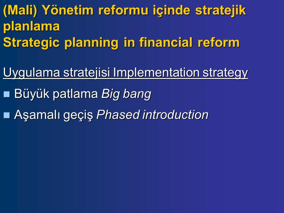 Uygulama stratejisi Implementation strategy Büyük patlama Big bang Büyük patlama Big bang Aşamalı geçiş Phased introduction Aşamalı geçiş Phased introduction (Mali) Yönetim reformu içinde stratejik planlama Strategic planning in financial reform