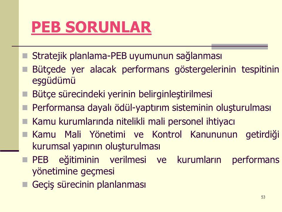 53 PEB SORUNLAR Stratejik planlama-PEB uyumunun sağlanması Bütçede yer alacak performans göstergelerinin tespitinin eşgüdümü Bütçe sürecindeki yerinin