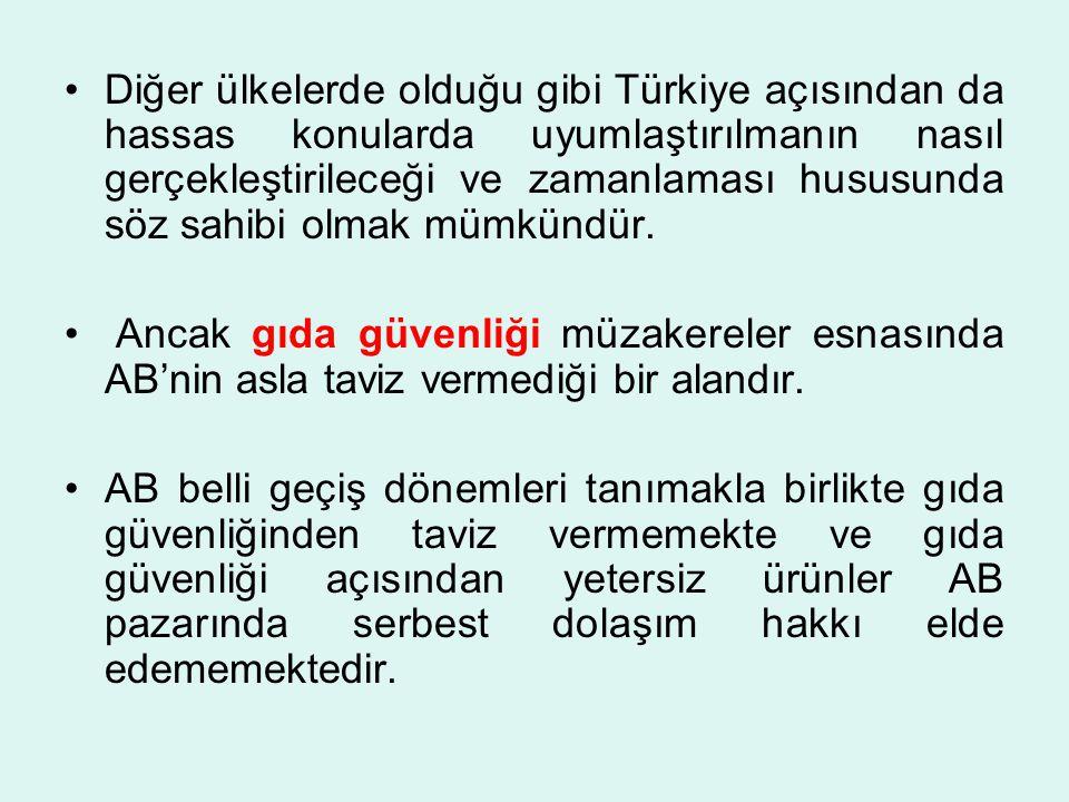 Diğer ülkelerde olduğu gibi Türkiye açısından da hassas konularda uyumlaştırılmanın nasıl gerçekleştirileceği ve zamanlaması hususunda söz sahibi olmak mümkündür.