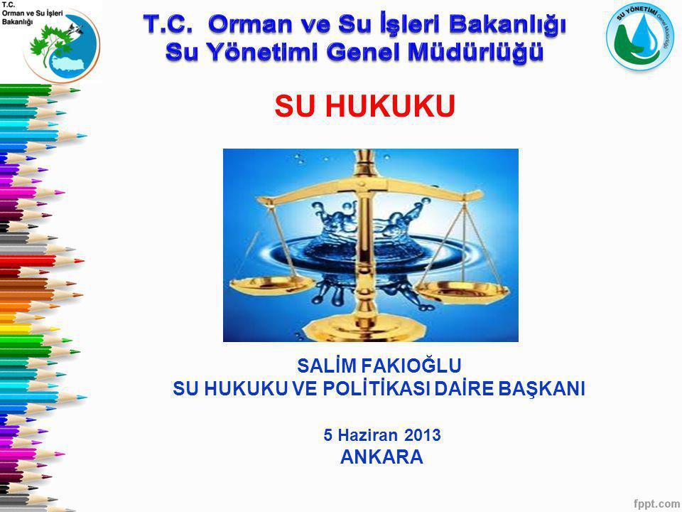 SALİM FAKIOĞLU SU HUKUKU VE POLİTİKASI DAİRE BAŞKANI 5 Haziran 2013 ANKARA SU HUKUKU