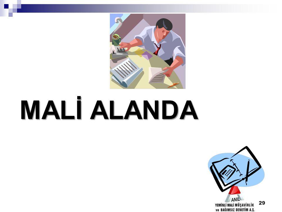 29 MALİ ALANDA