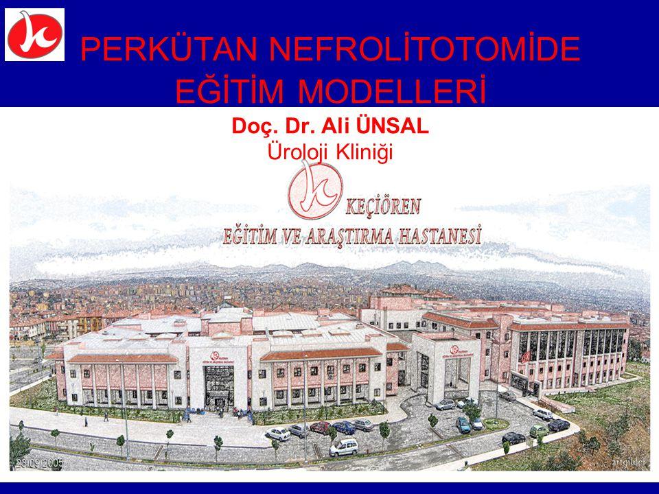 PERKÜTAN NEFROLİTOTOMİDE EĞİTİM MODELLERİ Doç. Dr. Ali ÜNSAL Üroloji Kliniği