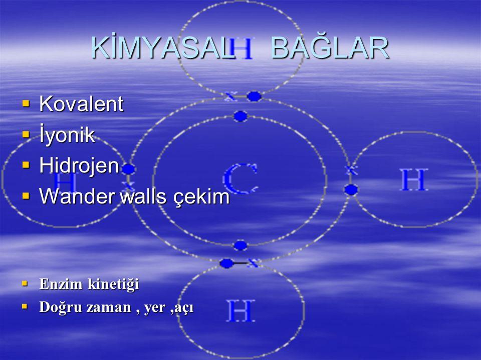 KİMYASAL BAĞLAR  Kovalent  İyonik  Hidrojen  Wander walls çekim  Enzim kinetiği  Doğru zaman, yer,açı