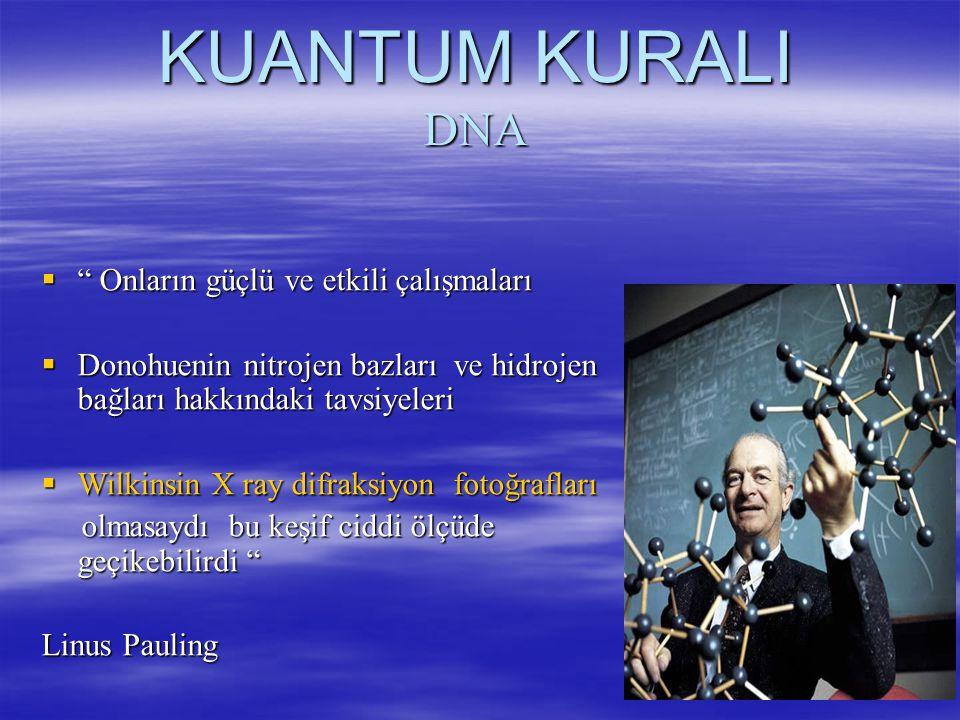 KUANTUM KURALI DNA  Onların güçlü ve etkili çalışmaları  Donohuenin nitrojen bazları ve hidrojen bağları hakkındaki tavsiyeleri  Wilkinsin X ray difraksiyon fotoğrafları olmasaydı bu keşif ciddi ölçüde geçikebilirdi olmasaydı bu keşif ciddi ölçüde geçikebilirdi Linus Pauling