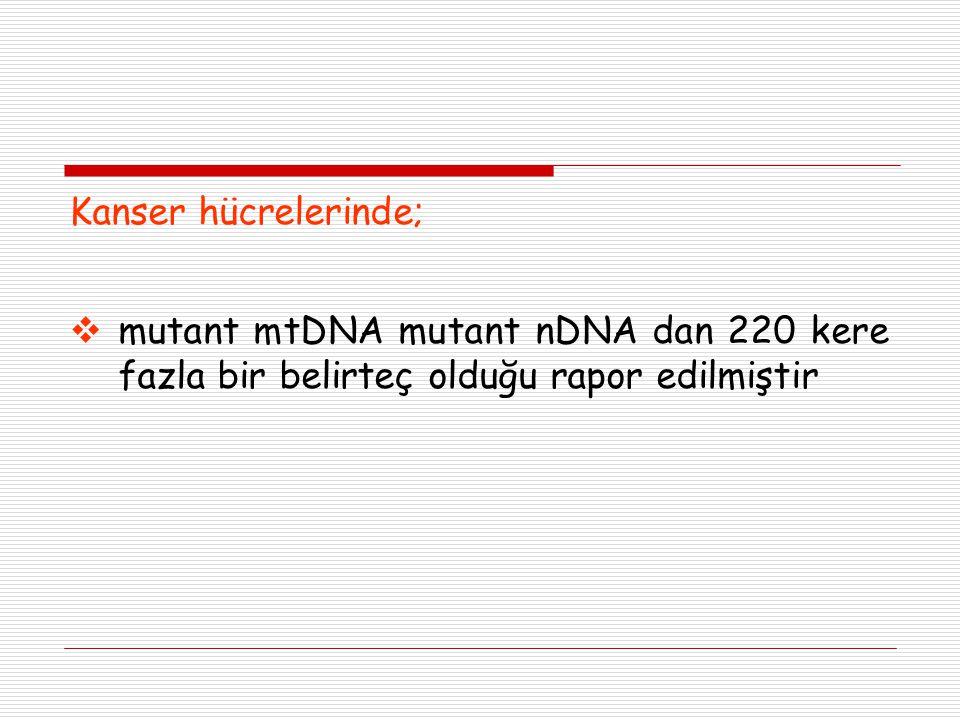 Kanser hücrelerinde;  mutant mtDNA mutant nDNA dan 220 kere fazla bir belirteç olduğu rapor edilmiştir