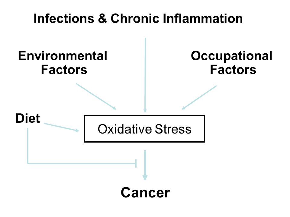 Oxidative Stress Cancer Diet Environmental Factors Occupational Factors Infections & Chronic Inflammation