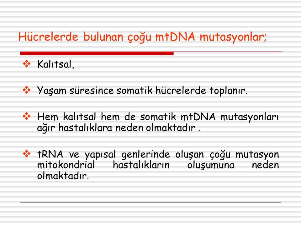 Hücrelerde bulunan çoğu mtDNA mutasyonlar;  Kalıtsal,  Yaşam süresince somatik hücrelerde toplanır.  Hem kalıtsal hem de somatik mtDNA mutasyonları