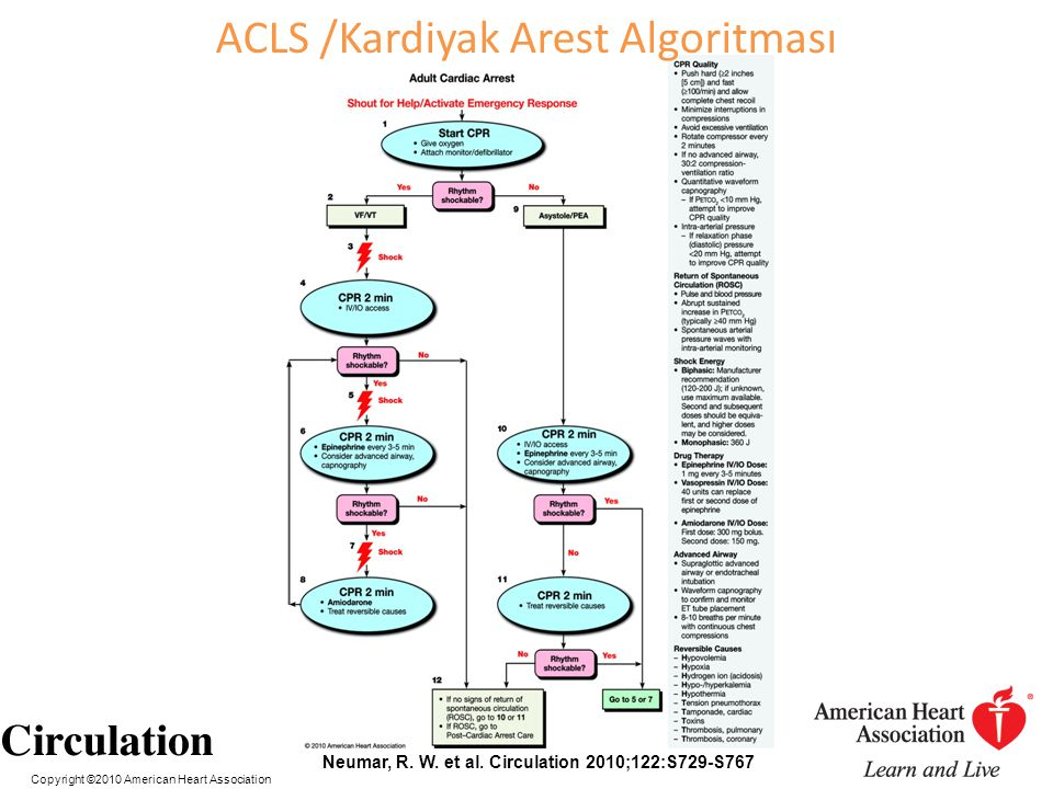 Copyright ©2010 American Heart Association Neumar, R. W. et al. Circulation 2010;122:S729-S767 ACLS /Kardiyak Arest Algoritması