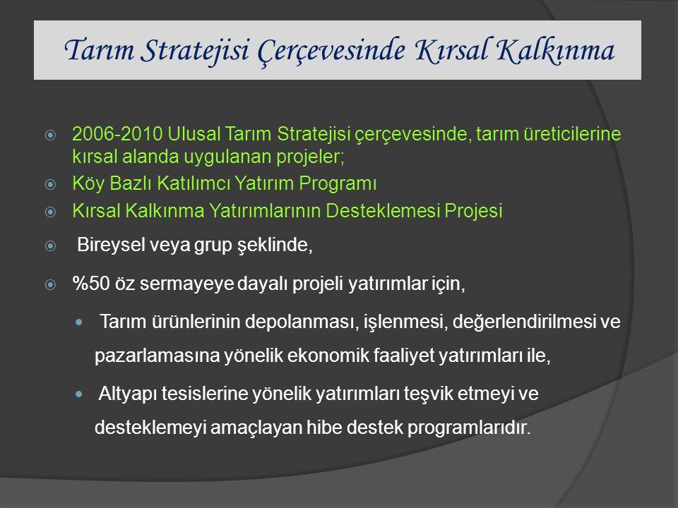 Tarım Stratejisi Çerçevesinde Kırsal Kalkınma  2006-2010 Ulusal Tarım Stratejisi çerçevesinde, tarım üreticilerine kırsal alanda uygulanan projeler;  Köy Bazlı Katılımcı Yatırım Programı  Kırsal Kalkınma Yatırımlarının Desteklemesi Projesi  Bireysel veya grup şeklinde,  %50 öz sermayeye dayalı projeli yatırımlar için, Tarım ürünlerinin depolanması, işlenmesi, değerlendirilmesi ve pazarlamasına yönelik ekonomik faaliyet yatırımları ile, Altyapı tesislerine yönelik yatırımları teşvik etmeyi ve desteklemeyi amaçlayan hibe destek programlarıdır.