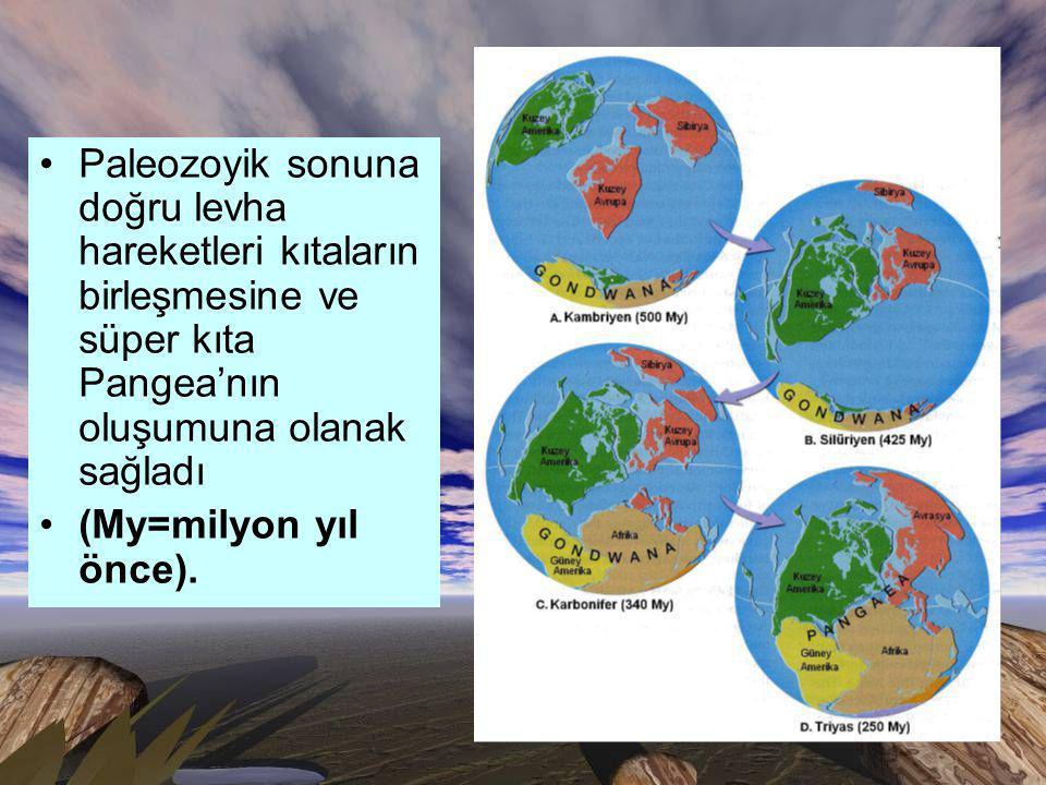 Paleozoyik sonuna doğru levha hareketleri kıtaların birleşmesine ve süper kıta Pangea'nın oluşumuna olanak sağladı (My=milyon yıl önce).