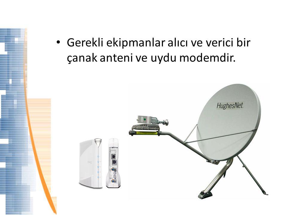 Amerika'da Uydudan İnternet 1996'da ilk bireysel uydudan internet HughesNet ile servise başladı.