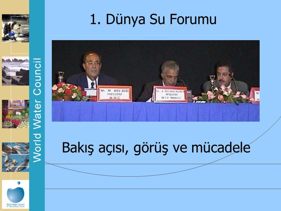 1. Dünya Su Forumu Bakış açısı, görüş ve mücadele