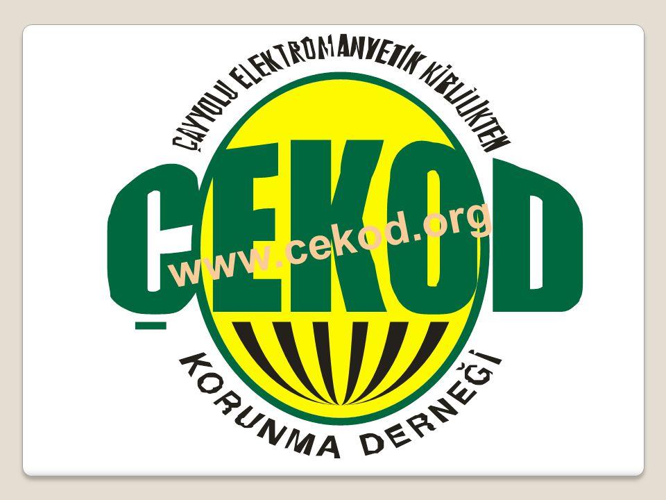 www.cekod.org